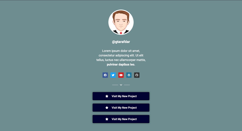 Social Bio Link Page Design 05